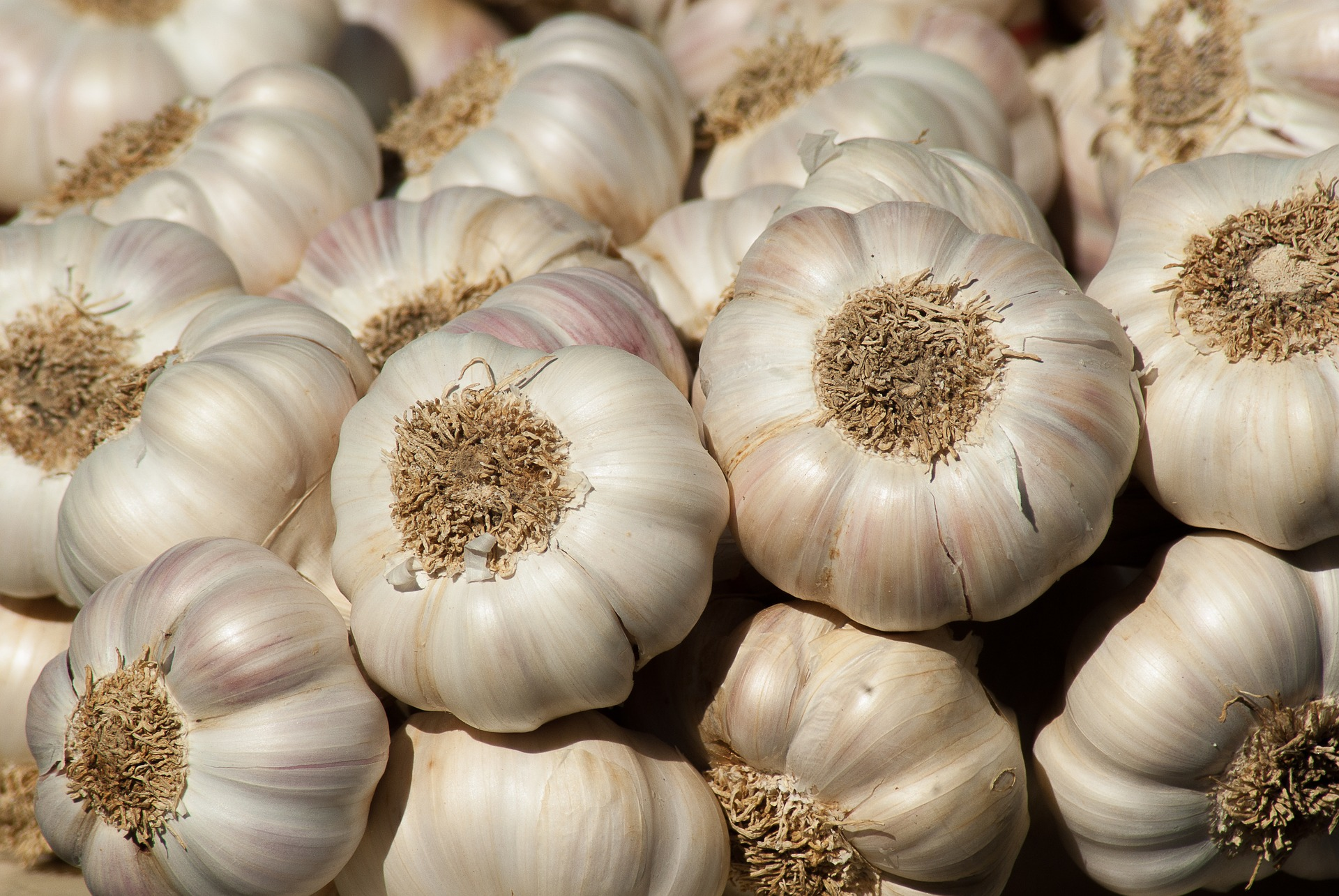 The Health Benefits of Garlic | Inside Out Health & Wellness